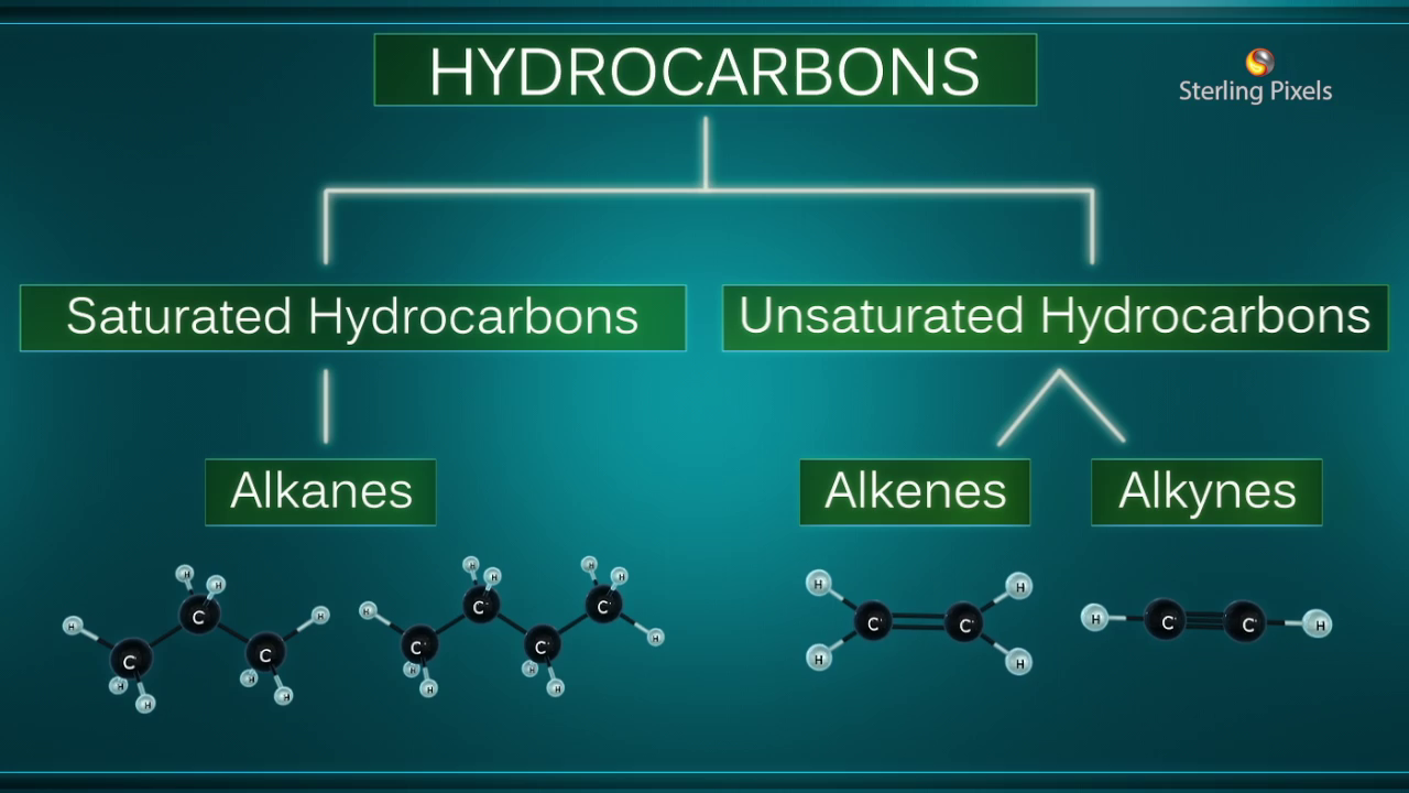 Combustion Reactions of Carbon Compounds